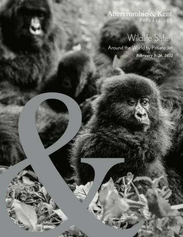 Wildlife Safari: Around the World by Private Jet 2022
