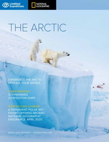The Arctic 2021