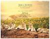Africa Travel Planner 2018-2020