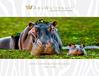 Africa Safaris & Wildlife Cruise 2019/20