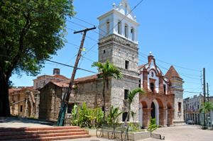 Dominicanistock