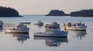 Fishing Boat Trawlers, Maine