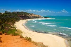 Beautiful beach with palm trees at Praia do Amor Brazil