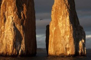 Galapagos istock (1)