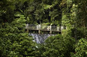 Puerto Rico istock (1)