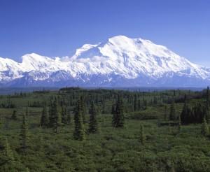 Alaskaistock-(2)