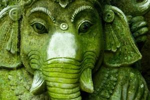 India-istock-(1)