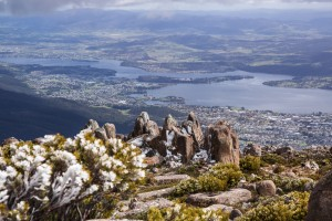 View of Mount Wellington