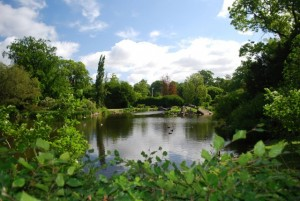 The Lagoon in Kungslotte Park