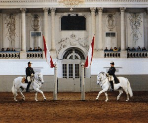 450 Year Of The Spanish Riding School