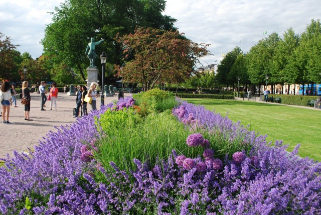 Spring flowers in the King's Gardens, a popular Stockholm venue