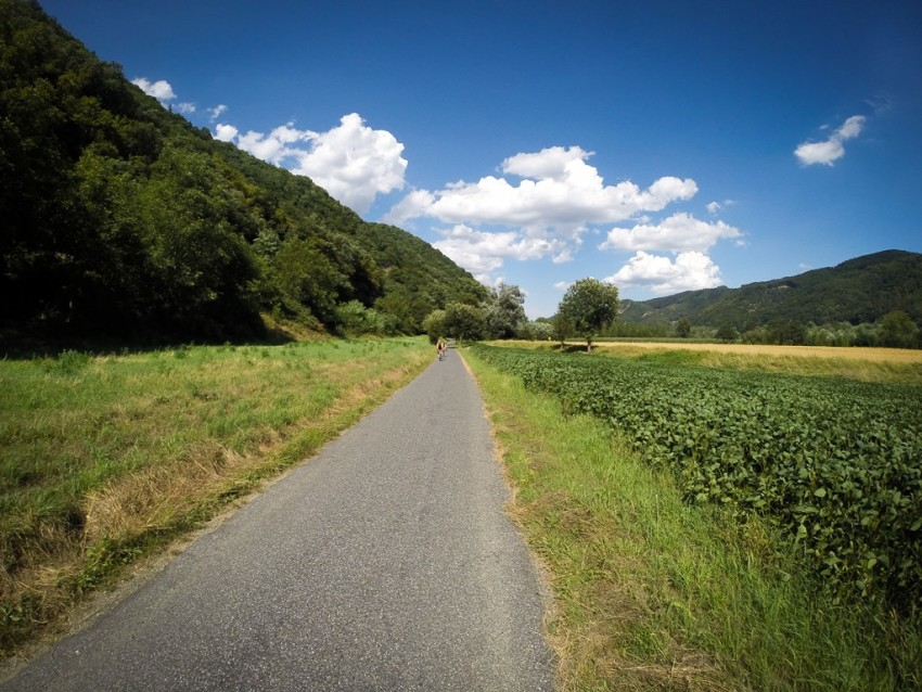 Approaching riders in the Wachau Valley. © 2015 Ralph Grizzle