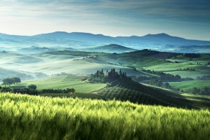 Early Morning In The Val d'Orcia