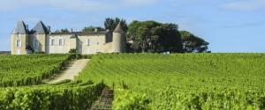 Vineyards of Bordeaux