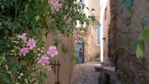 Corsican Villages tour.