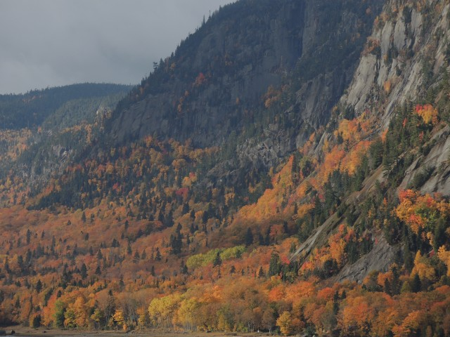 The peak of autumn color along the Saguenay River