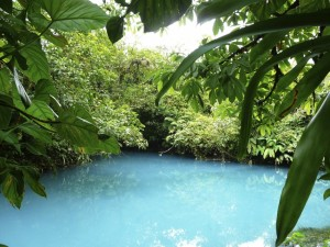 A blue lagoon in the Manuel Antonio Nature park