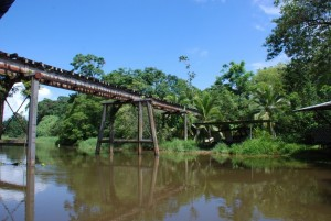 Tortuguero Canal Jungle River Railroad bridge, Costa Rica
