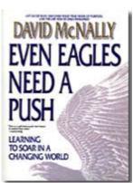 "Click the book to grab your own copy of ""Even Eagles Need A Push"""