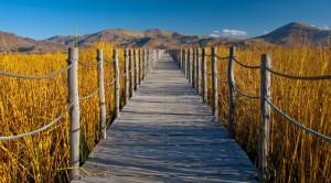 A bridge leading to Lake Titicaca