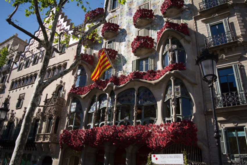 Roses are also a huge part of Sant Jordi Day, so much so that even Gaudi's Casa Battlo was adorned with them.