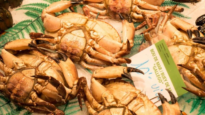 Fresh Crabs At Barcelona's Boqueria market.