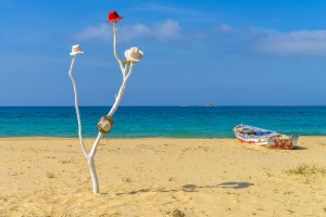 One of the many stunning beaches of Naxos