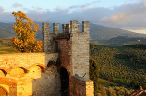 Castello di Nipozzano, Chianti near Florence in Tuscany, Italy