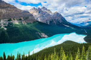 Peyto Lake of Banff National Park in Canada
