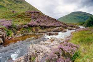 The river Coe as it flows over rocks at Glencoe in Scotland