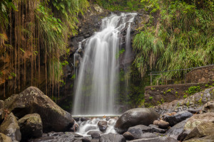 Beautiful Annandale Falls In Grenada