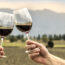 Wine and Dine the Mendoza Way